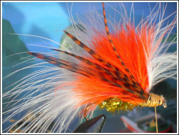 Fly Fishing Guides Flies Fishermen Gear Trump 2016 Streamer 1-2016