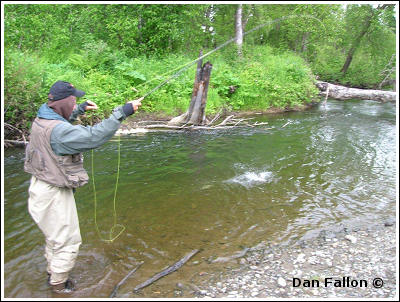 Fly Fishing Guides Flies Fishermen Gear Fallon Fishing 1-2014