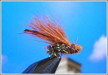 Fly Fishing Guides Flies Fishermen Gear Jeweled Caddis Fly 1-2011