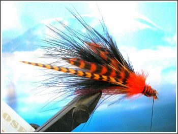 Fly Fishing Guides Flies Fishermen Gear Mahogany Lady 11-2010