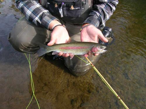 Fly Fishing Guides Flies Fishermen Gear Rainbow Trout 2-2018