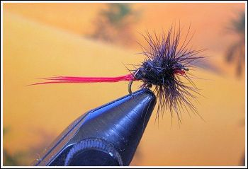 Fly Fishing Guides Flies Fishermen Gear Red Baron Fly 1-2011