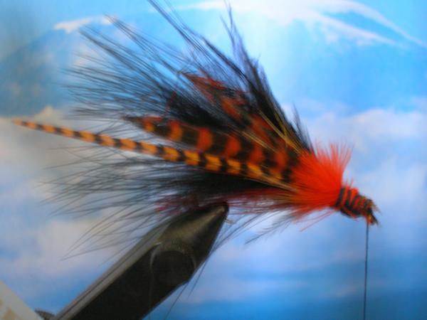 Fly Fishing Guides Flies Fishermen Gear Striped Fly 1-2017