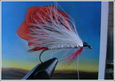 Fly Fishing Guides Flies Fishermen Gear White Fly 9-2011