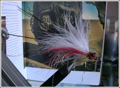 Fly Fishing Guides Flies Fishermen Gear White and Red Fly 9-2011
