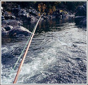 The Eternal Fly Line Tippet and Fly Setup