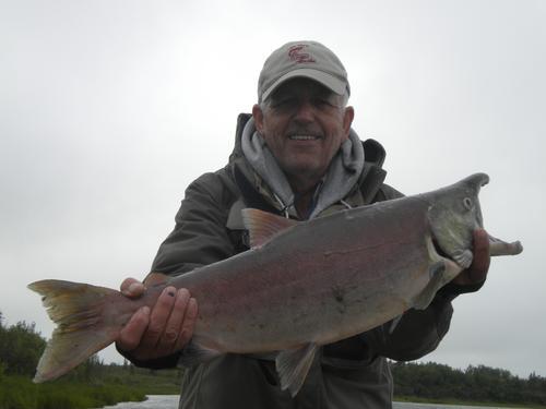 Beautiful Salmon captured by Dan Fallon